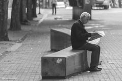 O Leitor (Gergia Gazzinelli) Tags: praa homem leitura leitor