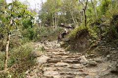 Bergauf nach JUVING (Alfesto) Tags: nepal trekking juving kharikhola taksindu distriktsolukhumbu