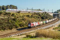 Coincidencia (evarujo) Tags: barcelona madrid espaa train tren spain siemens railway cargo ave catalunya canonef2470mmf28lusm freight sanroque granollers altpenedes adif santsadurndanoia vossloh s103 canoneos7d velaro euro4000 logitren 335028