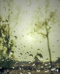 Rainy day in Paris (joly_jeff) Tags: food paris france seine photography timelapse ledefrance louvre doubleexposure eiffel dslr fr tripleexposure focusstack 24105mm jewells canon5dmarkiii jewellerypics wwwjeffjolycom jeffjoly equipeinteractivecom