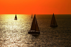 4 sailboats at sunset - Tel-Aviv beach (Lior. L) Tags: sunset sea sky orange beach sailing silhouettes sail sailboats 4sailboats