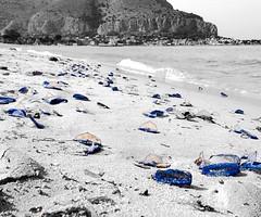Meduse Blu (giuliamonteleone) Tags: blue sea beach nature sand jellyfish sicilia mondello meduse