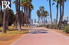 Coronado Tidelands Park (Bryan Robbins Photography) Tags: life park trees summer beach landscape sandiego lifestyle atmosphere palmtrees summertime summerlife summerlifestyle coronadotidelandspark