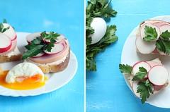 Breakfast #1 (I_Nneska) Tags: breakfast bread egg sausage sandwich parsley radish cottagecheese