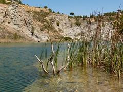 Plags de Vilob (6) (calafellvalo) Tags: paisajes lake pond lagoon plaster gypsum ecologa mirador gesso yeso rull guix calafellvalo vilob pilago yeseras vilobi vilobdelpeneds plags guixeres plagsdevilob plag plaggran parcdeltalls yesoguixvilovplagscalafellvalolagoslakepondplaster