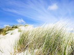 Duinen (MJ Klaver) Tags: beach coast dunes nederland shore ameland duinen kust lx100 panasoniclumixdmclx100