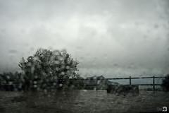 Hoy me quedo en casa, lo de fuera no me interesa... ([Nelooo]) Tags: lluvia paisaje gotas nubes rbol tormenta bartolo desenfocado borroso