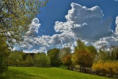 Mr. Blue Sky (Kai Beinert) Tags: green nature grass clouds landscape outdoor natur wiese himmel bluesky landschaft blauerhimmel