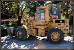 Caterpillar 950 (DaveFuma) Tags: caterpillar wheeled loader pala 950 radlader ruspa gommata caricatrice chrgeuse