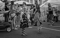 Little Girl, Little Dog (Anne Worner) Tags: street people blackandwhite bw woman dog chihuahua man girl monochrome sunglasses walking wagon real mono child dress candid monochromatic tights pregnant georgetown purse mobilephone flipflops shorts leash staring pulling handbag ricohgr onthestreet reallife stopped texting vendors walkingthedog streetphotograpy prse anneworner salestents littledoglaughednoiret 2016poppyfestivaloutdoors