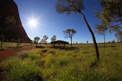sun at Uluru (giannhs_sk) Tags: trees light red sun rock fantastic colours ngc australia center fisheye uluru 12mm fullframe ayers redcenter sunstar samyang club16 samyang12mmf28fisheye