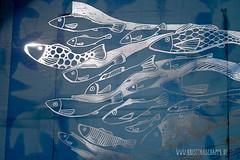making_of_Fruehlingspost2016_5577.jpg (KristinaMariaS) Tags: screenprinting patterndesign handprintedfabric fishpattern amliebstenbunt kristinaschaper