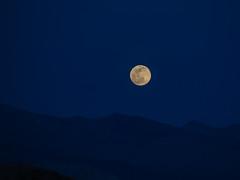 Moonrise 2 (Shira Bezalel) Tags: moon mountains moonrise