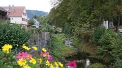Around Oppenau (7) (Tom Rataj) Tags: germany blackforest schwartzwald oppenau