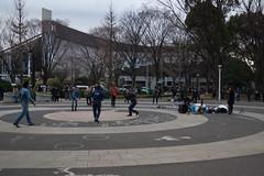 DSC02823.jpg (randy@katzenpost.de) Tags: winter japan yoyogikoen shibuyaku tkyto japanurlaub20152016