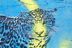 Street-art - Mosko (Dicksy93) Tags: street urban paris france art animal wall seine canon painting eos graffiti europe paint outdoor couleurs tag dessin peinture graff 75 mur extrieur iledefrance bombing ville carnivore flin fauve 19me panthre mosko 650d img2350 dicksy93 pressionisme