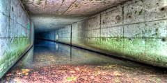 Beholder (UnderMKE) Tags: brown reflection green nature wet water wisconsin underground geometry calming tunnel drain milwaukee serene cooked urbex draining urbanriver