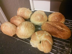 Bread rolls fresh out of the oven. Not baked by me! (KT-wu) Tags: bread baking breadrolls
