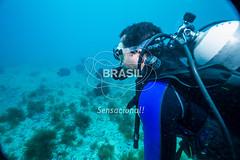 NE_Abrolhos0042 (Visit Brasil) Tags: horizontal brasil natureza mergulho bahia esporte nordeste detalhe aventura externa abrolhos subaqutica comgente diurna