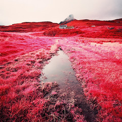 Cloud on An Sgurr (Mark Rowell) Tags: 120 6x6 film ir scotland highlands kodak hasselblad infrared expired swc 903 eigg eir ansgurr aerochrome