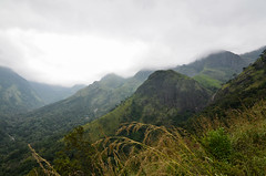 View as we climbed to Control station - our camp on the 4th day. (parmeetkohli) Tags: mist fish mountains coffee trek peace tea country lakes culture kerala jungle gods own toddy kathakali