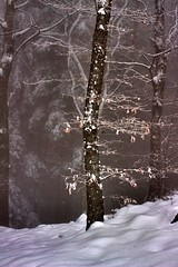 Il Pratomagno d'Inverno (M K S v i d e o - p h o t o g r a p h y) Tags: winter snow canon il inverno valdarno borro marksoetebier marksoetebierphotography mksvideophotography markchristiansoetebierphotography
