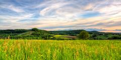 Endless Grassland 2k15 (jweber_foto) Tags: summer green clouds landscape grassland hdr