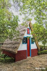 _DSC5743 (mary~lou) Tags: house cute woodland nikon little small maryfletcher 15challengeswinner mary~lou