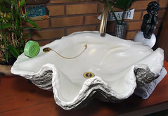 Grey Giant Clam Shell SINK 15 (LittleGems AR) Tags: ocean sea sculpture sun beach home statue giant bathroom shower aquarium soap sand bath sink natural contemporary unique decorative shell craft style toilet towel clam basin special shampoo taps wash ornament gift seashell pearl nautical reef decor spa luxury opulent fossils oneoff clamshell mollusks cloakroom bespoke tridacna sculpt crafted gigas facetowel