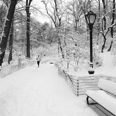 I get weak in a glance. Isn't this what's called romance? (larrycloss) Tags: snow bench square nikon centralpark squareformat jonas runner blizzard theramble nikond40x d40x iphoneography instagramapp uploaded:by=instagram foursquare:venue=4f87534ae4b0ab0c19244a43