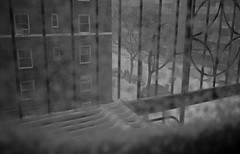Blizzard, 2016 (Mattron) Tags: leica nyc newyorkcity blackandwhite bw snow newyork film analog 35mm diy rangefinder d76 queens apx100 astoria fireescape agfa blizzard m6 foresthills handprocessed filmisnotdead blizzard2016