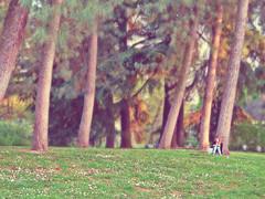 spring (poludziber1) Tags: park city people urban italy green spring colorful italia milano challengeyouwinner