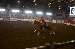 Cowboy Mounted Shooting (Adventurer Dustin Holmes) Tags: horses sports sport events event missouri equestrian 2016 mountedshooting cowboymountedshooting ozarkempirefairgrounds ozarkspringroundup