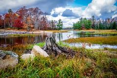 Indian Creek (petec1113) Tags: autumn trees fall wisconsin creek eagleriver northwoods