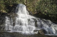 IMGPE19139_Fk - Great Smoky Mountain National Park - Laurel Falls (David L. Black) Tags: us unitedstates tennessee waterfalls sevierville greatsmokymountainsnationalpark