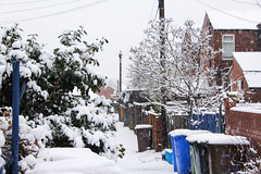 IMG_9828 (zafiraahmed) Tags: uk trees houses winter plants white snow streets cold cars ice nature leaves architecture buildings grunge snowstorm minimal pale snowdrops minimalism minimalistic zafiraahmed