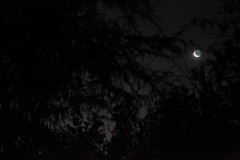 La Luna y su luz cenicienta (Mik Chile) Tags: chile luz miguel canon mark luna ii 5d fuentes silva markii calama cenicienta 24105l