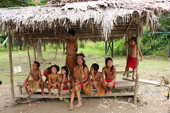 "Comunidad Yagua en la Isla • <a style=""font-size:0.8em;"" href=""http://www.flickr.com/photos/78328875@N05/25653559424/"" target=""_blank"">View on Flickr</a>"