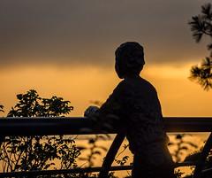 Watching the Sunrise.jpg (Eye of G Photography) Tags: trees usa statue sunrise forrest places whidbeyisland northamerica washingtonstate langley sunsetsunrise skyclouds