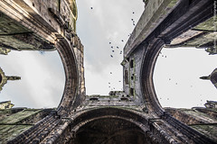 Kirkstall Abbey - lookin' up (Andrea_Lazzarato) Tags: old church abbey decay leeds medieval kirkstall rudere abazia