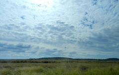 DSCN2267 (LoxPix2) Tags: road storm mountains bird river duck scenery farm hill australia brisbane mirage powerstation roadtrain lockyervalley loxpix