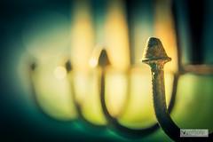 H41C7267_out (joly_jeff) Tags: portrait paris canon noiretblanc hdr couleur pontneuf photographe poselongue eosmarkiii photosdeparis droitsrservs caisseamricaine jeanfranoisjoly jeffjoly equipeinteractivecom