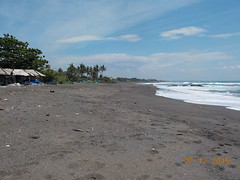 DSCN1855 (petersimpson117) Tags: seseh pererenan