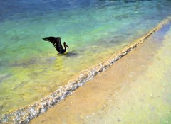 Pelican on a Cancun beach (Pejasar) Tags: vacation color bird art beach water mexico sand paint wildlife shoreline wave pelican shore cancun impression