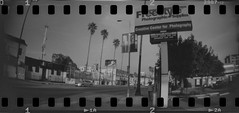 Freestyle Photographic Supplies (Zach Storer) Tags: film analog 35mm lomography 35mmfilm apx100 rocket agfa sprocket agfaapx100 homedeveloped fpp sprockethole shootfilm freestylephotographicsupplies istillshootfilm sprocketrocket 35mmsprockethole freestylephoto lomographysprocketrocket filmshooterscollective