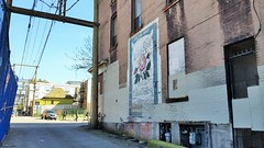 Wild Rose (SqueakyMarmot) Tags: vancouver alley downtowneastside backlane ghostsign easthastingsstreet
