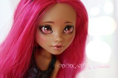 PicsArt_04-09-06.54.05 (Cleo6666) Tags: monster high wolf doll ooak custom mattel repaint howleen monsterhigh