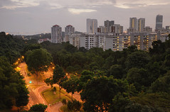 Above Telok Blanagh (henriksundholm.com) Tags: city trees houses urban streets grass skyline buildings lights singapore asia traffic highrise lamps roads southeast hdr hendersonroad southernridges hendersonwaves telokblanagh lowaerial