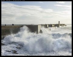 H51-B0006311 copy (mingthein) Tags: sunset sea seascape beach portugal water landscape coast seaside 645 do availablelight atlantic hasselblad porto douro medium format ming hc foz onn 22100 thein photohorologer mingtheincom 100f22 h5d50c