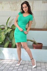Bollywood Actress Meghna Patel Photos Set-4-HOT PHOTOS (38)